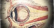 Toxicidad retiniana por vigabatrina