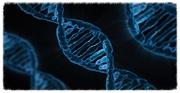 Un análisis genético podría identificar pacientes con epilepsia mioclónica juvenil refractario al tratamiento médico convencional