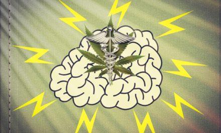 ¿Es útil el cannabis para el tratamiento de la epilepsia?  Nuevas evidencias publicadas sobre su uso en niños con síndrome de Dravet