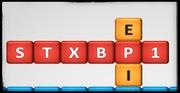 Encefalopatía STXBP1: un complejo trastorno del desarrollo neurológico con epilepsia y mucho más