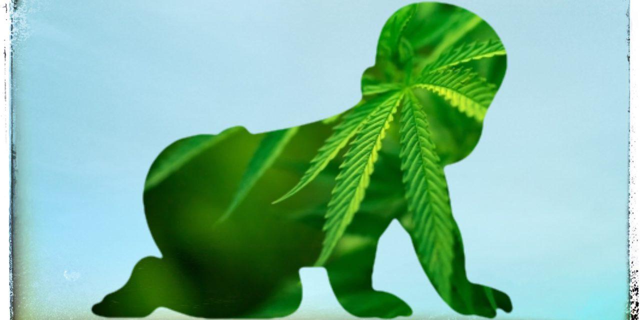Aumento de intoxicaciones por cannabis en niños en Francia