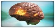 La repetición de las crisis epilépticas….¿causa daño cerebral? Reciente estudio no encuentra evidencia que apoye que así sea