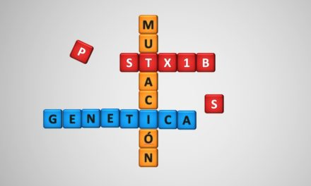 El diverso espectro clínico de las epilepsias relacionadas con el gen STX1B