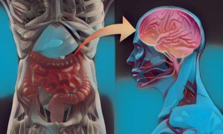 El psicobioma: ¿Cómo influye la microbiota intestinal en los trastornos neurológicos y psiquiátricos?
