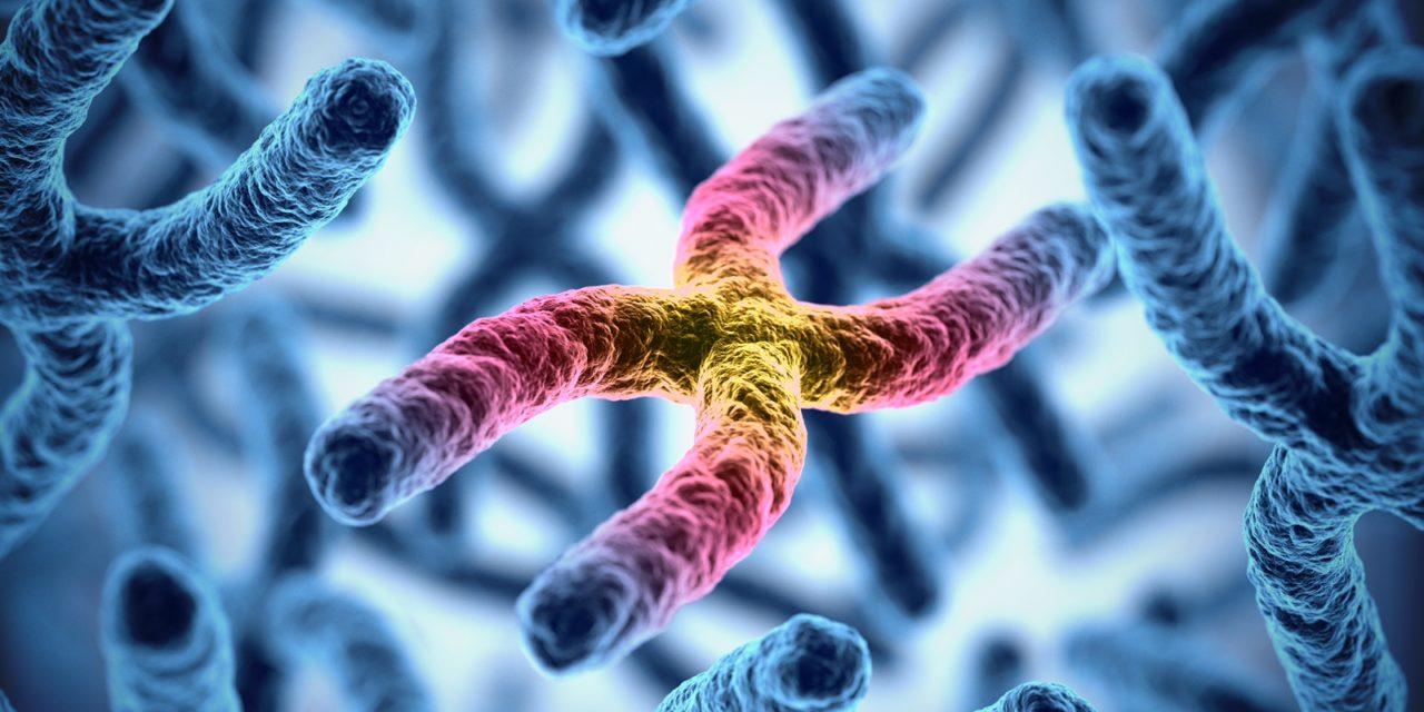 ¿Vale la pena realizar pruebas genéticas en adultos con epilepsia y discapacidad intelectual?