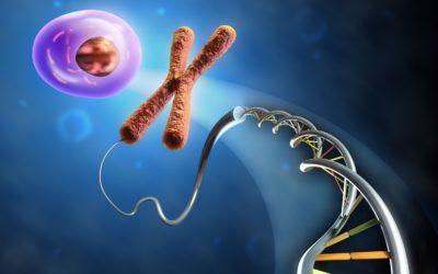 Avances en el diagnóstico genético de las encefalopatías epilépticas